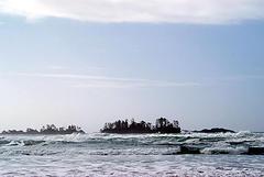 200504.jpg