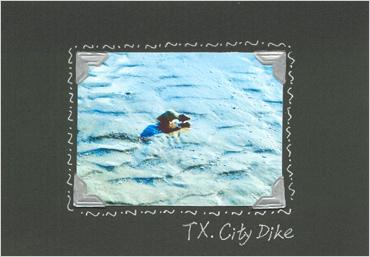 bdaycard01.jpg